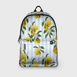 Рюкзак Лимоны цвета 3D — фото 2
