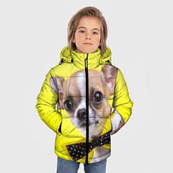Куртка зимняя для мальчика Чихуахуа с бабочкой цвета 3D-черный — фото 2