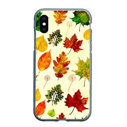 Чехол iPhone XS Max матовый Осень цвета 3D-серый — фото 1