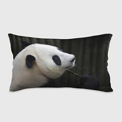 Подушка-антистресс Панда с веткой цвета 3D — фото 1