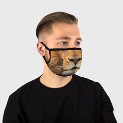 Маска для лица Красавец лев цвета 3D-принт — фото 1