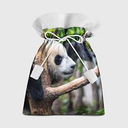 Мешок для подарков Бамбуковый медведь цвета 3D — фото 1