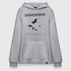Толстовка-худи оверсайз Shinedown: Sound of Madness цвета меланж — фото 1