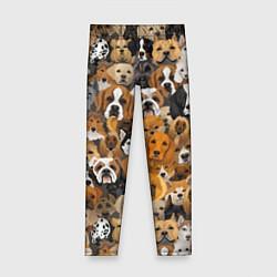 Леггинсы для девочки Породы собак цвета 3D — фото 1