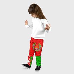 Брюки детские Патриот Беларуси цвета 3D — фото 2