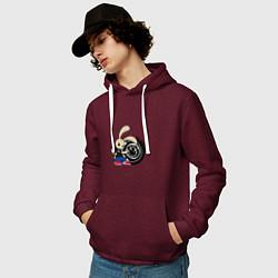 Толстовка-худи хлопковая мужская Blink-182: Street rabbit цвета меланж-бордовый — фото 2