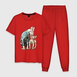 Пижама хлопковая мужская Кошки сфинксы цвета красный — фото 1