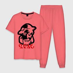 Пижама хлопковая мужская 2pac (black) цвета коралловый — фото 1