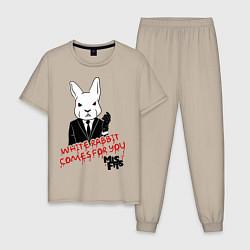 Пижама хлопковая мужская Misfits: White rabbit цвета миндальный — фото 1