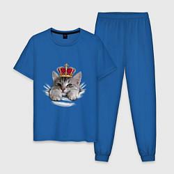 Пижама хлопковая мужская Pretty kitten цвета синий — фото 1
