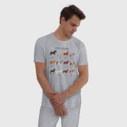 Пижама хлопковая мужская HORSE BREEDING цвета меланж — фото 2