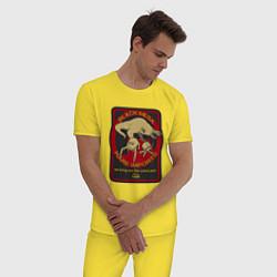 Пижама хлопковая мужская HALF-LIFE цвета желтый — фото 2