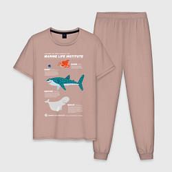 Пижама хлопковая мужская Marine Life цвета пыльно-розовый — фото 1