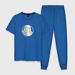 Пижама хлопковая мужская Гриффит Берсерк цвета синий — фото 1