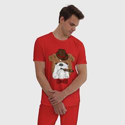 Пижама хлопковая мужская Английский бульдог с сигарой цвета красный — фото 2