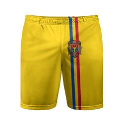 Шорты спортивные мужские Молдавия: лента с гербом цвета 3D — фото 1