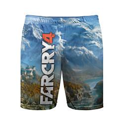 Шорты спортивные мужские Far Cry 4: Ice Mountains цвета 3D — фото 1