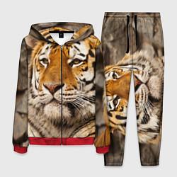 Костюм мужской Мудрый тигр цвета 3D-красный — фото 1