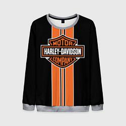 Свитшот мужской Harley-Davidson цвета 3D-меланж — фото 1