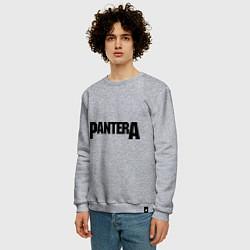 Свитшот хлопковый мужской Pantera цвета меланж — фото 2