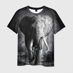 Футболка мужская Бегущий слон цвета 3D — фото 1