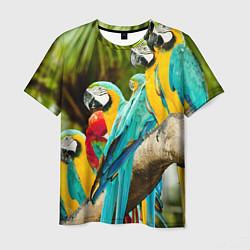 Мужская 3D-футболка с принтом Попугаи на ветке, цвет: 3D, артикул: 10095842603301 — фото 1