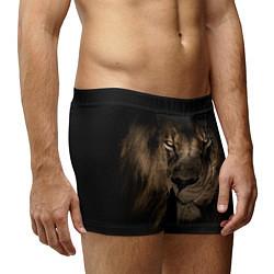 Трусы-боксеры мужские Львиный взгляд цвета 3D-принт — фото 2