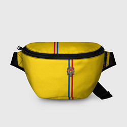 Поясная сумка Молдавия: лента с гербом цвета 3D-принт — фото 1
