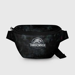 Поясная сумка Jurassic World: Smoke & Ash цвета 3D — фото 1