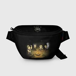 Поясная сумка Don't Starve campfire цвета 3D — фото 1
