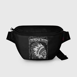 Поясная сумка Lynyrd Skynyrd: Jacksonville цвета 3D-принт — фото 1
