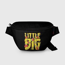 Поясная сумка Little Big цвета 3D — фото 1