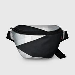 Поясная сумка Чёрно-белый цвета 3D — фото 1