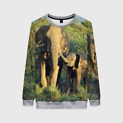 Свитшот женский Семья слонов в природе цвета 3D-меланж — фото 1